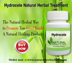 Hydrocele Herbal Treatment
